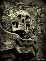 The Skull That Guards The Crypt by Estruda