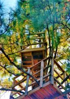 Our Treehouse Built by My Husband {Photo 9} by Empress-XZarrethTKon