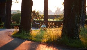 Golden hour by WouterPera