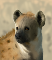 Realistic Hyena by take0it0isi