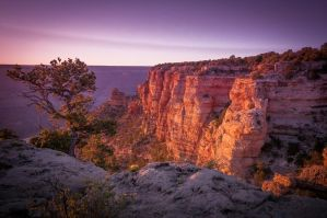 Grand Canyon Dusk by theCrow65