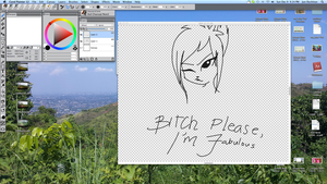 Bitch please, I'm fabulous- WIP by Skittles-the-kitty