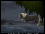 Surviving The Storm by Equinus