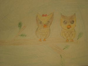 my owls marry and mark
