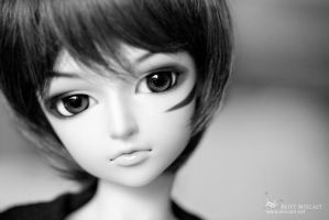 Taizo's New Faceup by brittmiscast