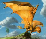 Orange Highland Dragon by Raironu