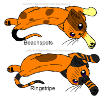 Beachspots and Ringstripe by Shadowpaw909