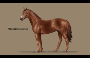 Thoroughbred Commission #8 by Jullelin