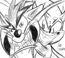 Crash and Sonic by selairy