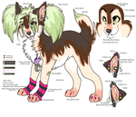 Kimi ref by BellaPanther