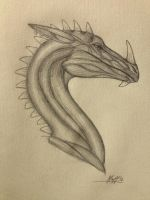 Anatomical Dragon Sketch by Dragonfan55