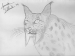 Iberic Lince by Ger95