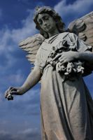 Angels Watching Over Me VIII by touch-the-flame