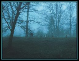 Cemetery 1 by Donohue