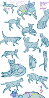 I saw the biggest cat dump EVR by Wolf-Mii