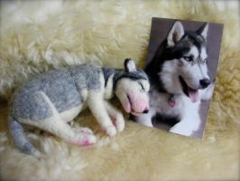 Needle Felted Commissioned Husky Puppy by CVDart1990