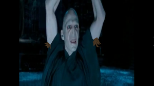 Hairy Potter (Voldemort) by TrollSaysLol