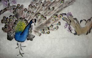 Peacock:Chinese Brush Painting by phoenixfyre6967