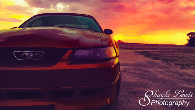 Mustang by S-LewisPhotography