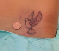 black and grey dove by IAteAllMyPaste