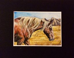 Wind knot ACEO by Fire-n-ash