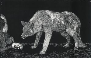 Scratch Art Coyote by Aerisyka