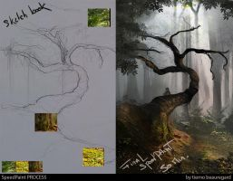 WiseOldForest PROCESS by ourlak