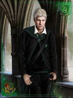 HP: Slytherin Prince by nejna
