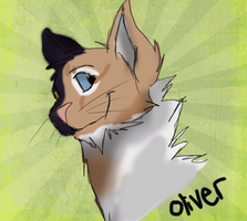 Oliver by NutmegFluff