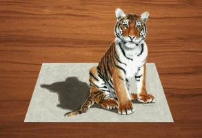 3D Colored Pencil Drawing of young Tiger by JasminaSusak