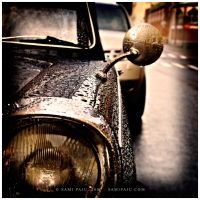 Vintage raindrops by Irreality