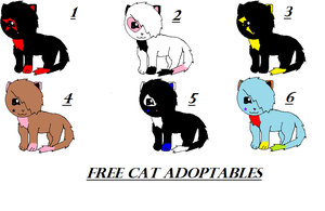 free cat adoptables 2 -CLOSED- by ShadowEar