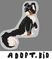 ADOPT BID!!!! by FoxiArtist