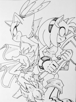 Amy and Blaze - back to back by SMSSkullLeader