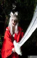 Inuyasha by coolsteel