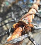 rust and rope by hazellucy