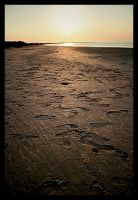 Tunisia n6 - Djerba Beach by sig-simon