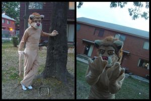 Lion Costume by VesteNotus
