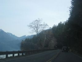Highway 101 by amandaxautomatic