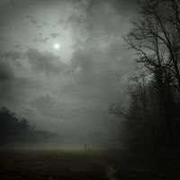 dark fog... by Alcove