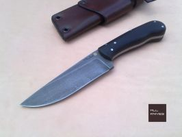 Companion High tech N690 Stainless by MLLKnives