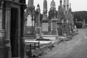 Glasnevin BW by deadrose333