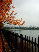 Autumn in New York City by AnnaGiladi