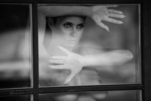 Window II by intst
