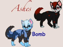 Bomb and Ashes by shinrah