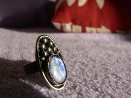 2. patinated silver ring by irineja