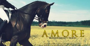 Amore Custom HP by EquideDesigns