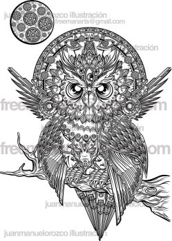 The owl Preview Part 1 by jml2art