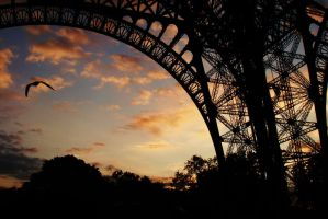 paris at sunset by sophie-carter