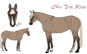 Chic Tea Rose Ref. by Cerulean-Sky-Stables